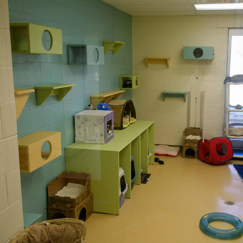 Animal Care Facility