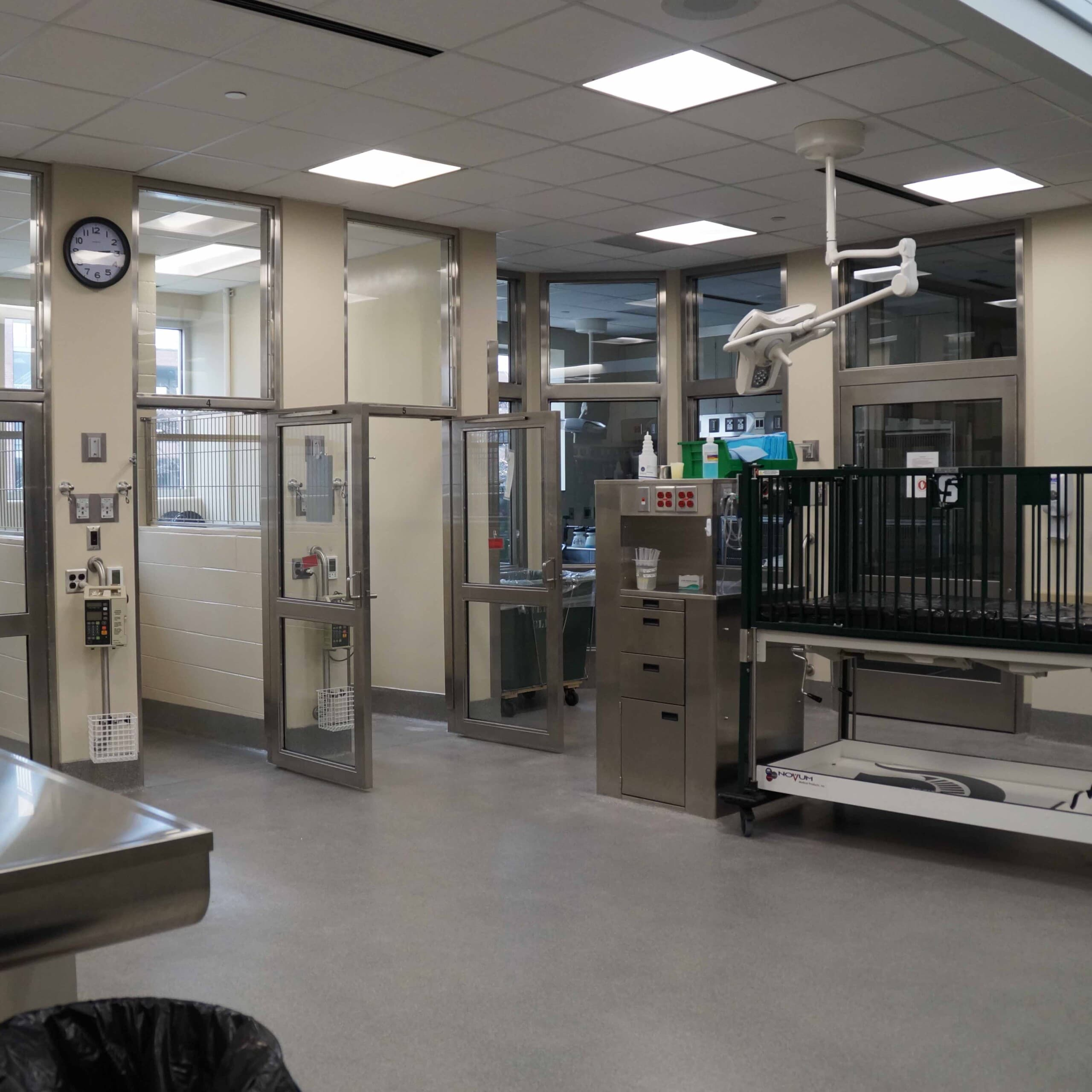 Veterinary Teaching Hospital